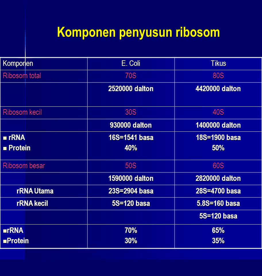 Komponen penyusun ribosom