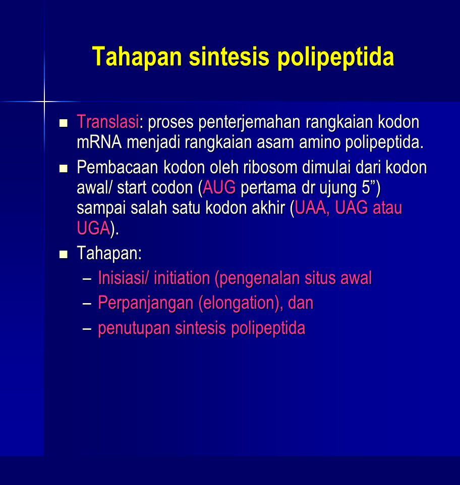 Tahapan sintesis polipeptida