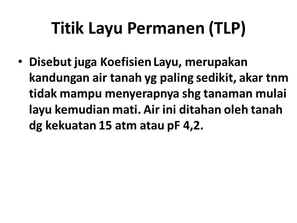 Titik Layu Permanen (TLP)