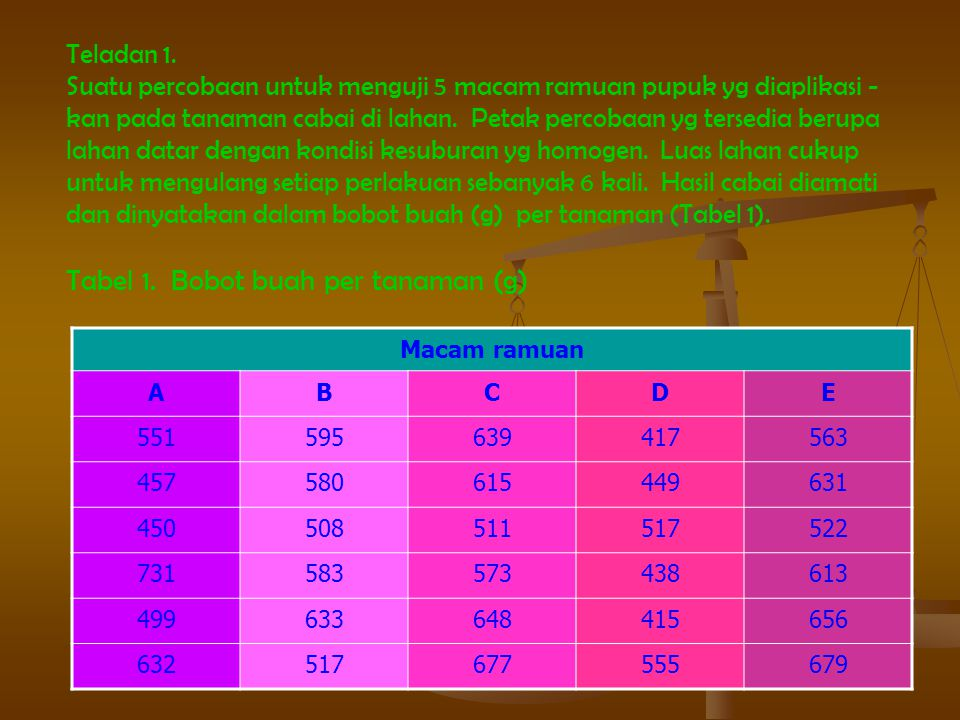 Tabel 1. Bobot buah per tanaman (g)