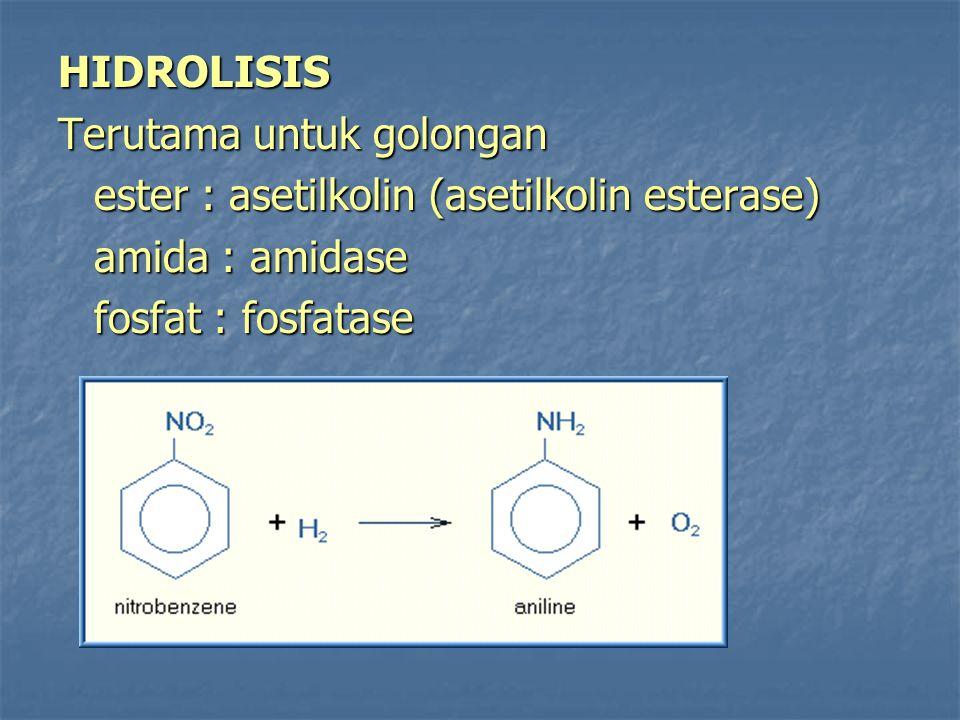 HIDROLISIS Terutama untuk golongan. ester : asetilkolin (asetilkolin esterase) amida : amidase.