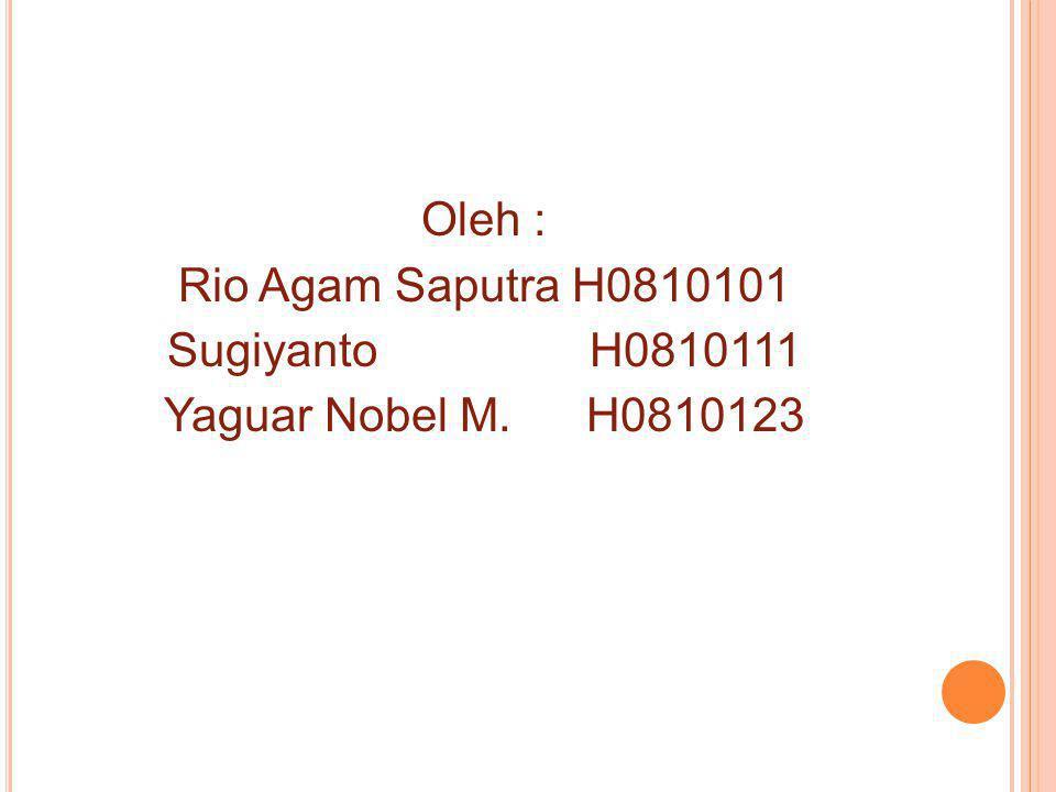 Oleh : Rio Agam Saputra H0810101 Sugiyanto H0810111 Yaguar Nobel M