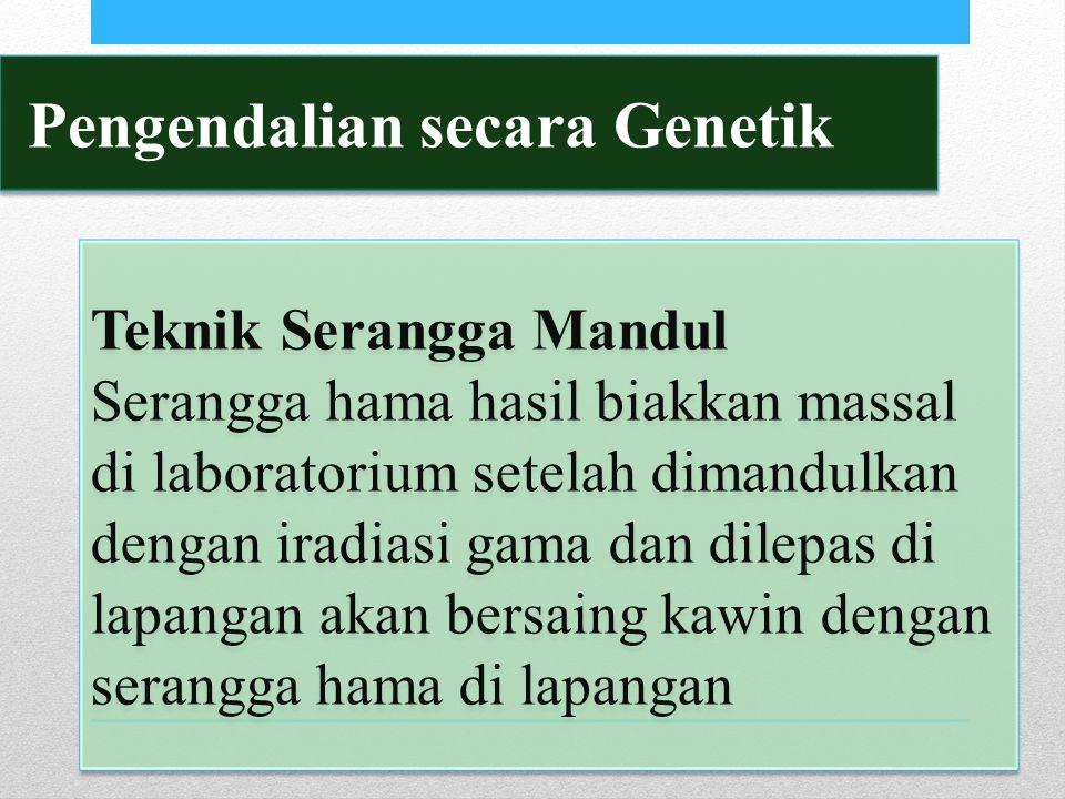 Pengendalian secara Genetik