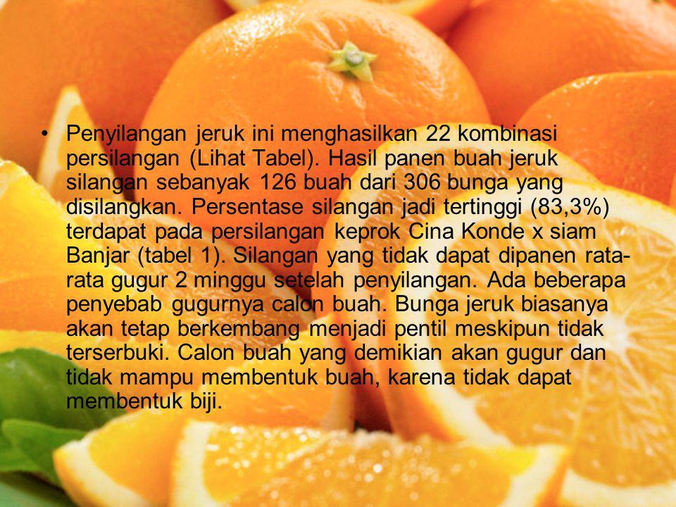 Penyilangan jeruk ini menghasilkan 22 kombinasi persilangan (Lihat Tabel).