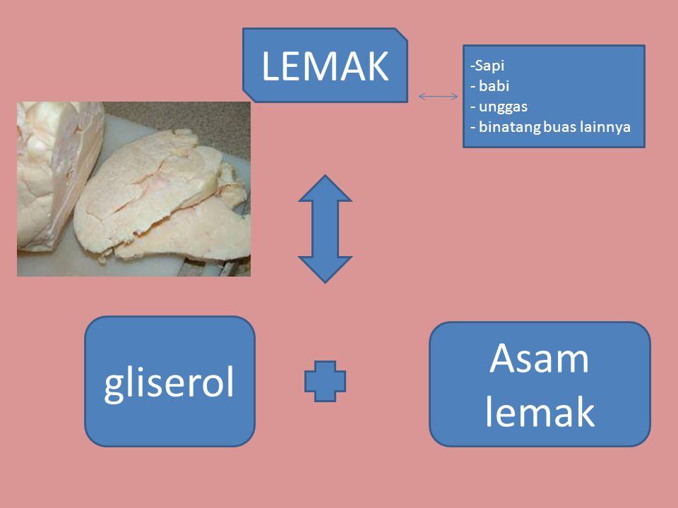 LEMAK Sapi babi unggas binatang buas lainnya gliserol Asam lemak