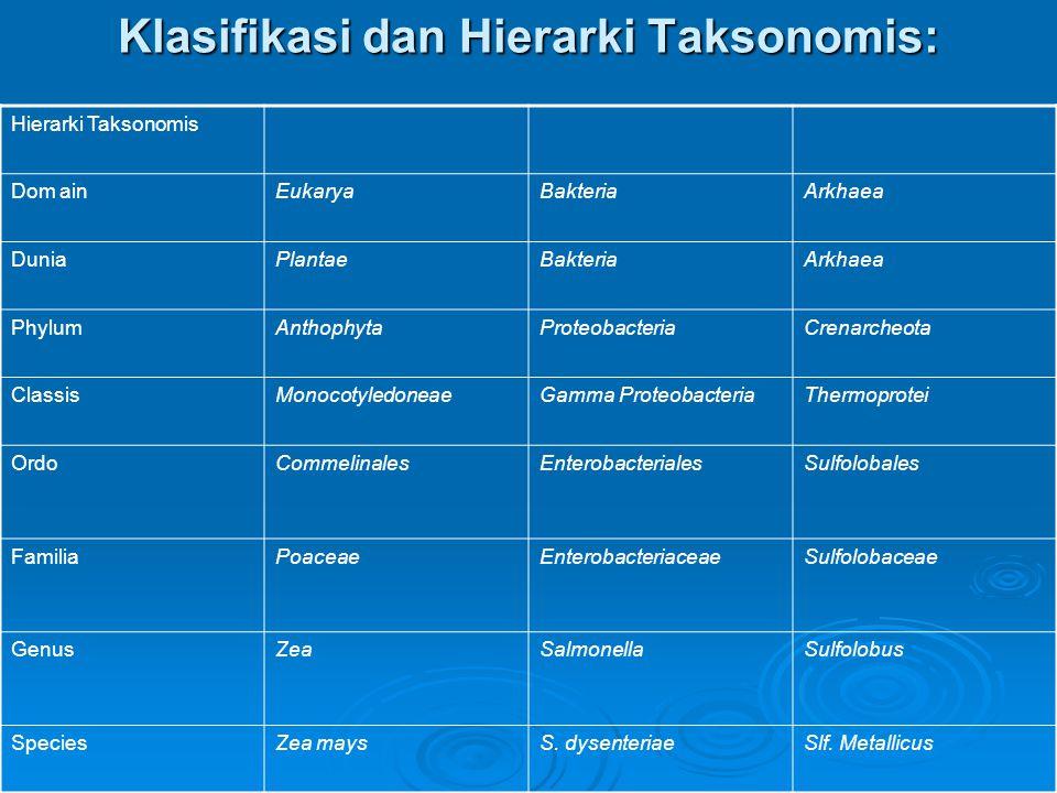 Klasifikasi dan Hierarki Taksonomis: