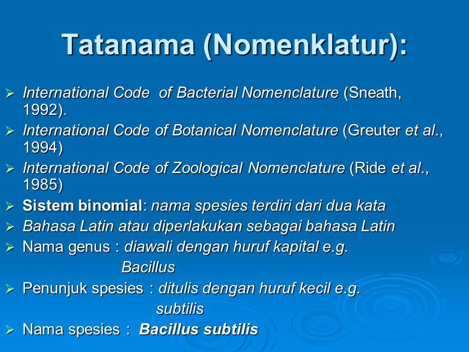 Tatanama (Nomenklatur):