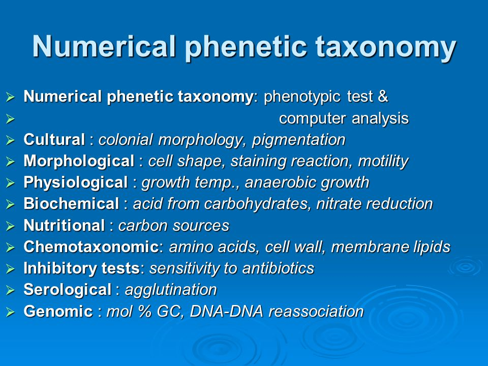 Numerical phenetic taxonomy