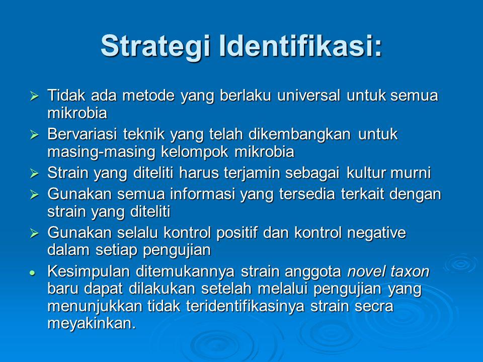 Strategi Identifikasi: