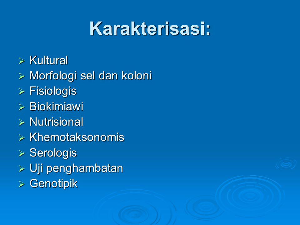 Karakterisasi: Kultural Morfologi sel dan koloni Fisiologis Biokimiawi