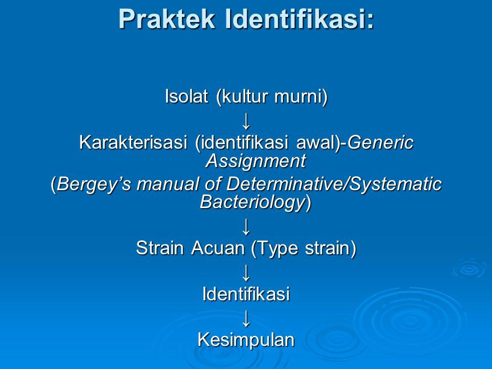 Praktek Identifikasi: