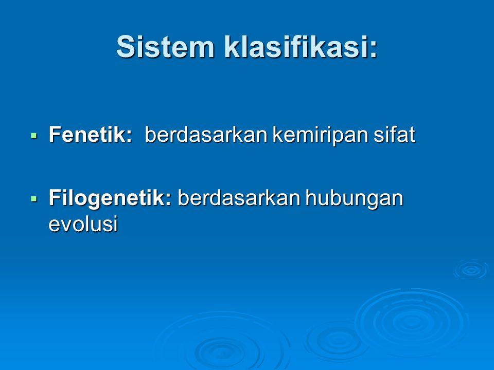 Sistem klasifikasi: Fenetik: berdasarkan kemiripan sifat
