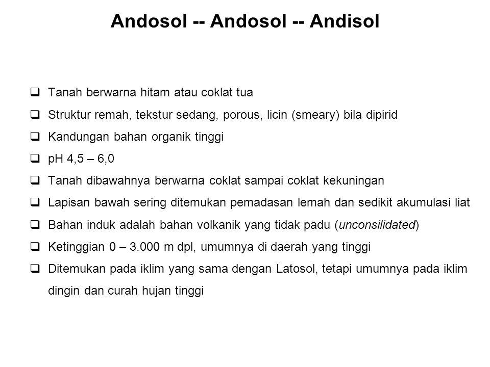 Andosol -- Andosol -- Andisol