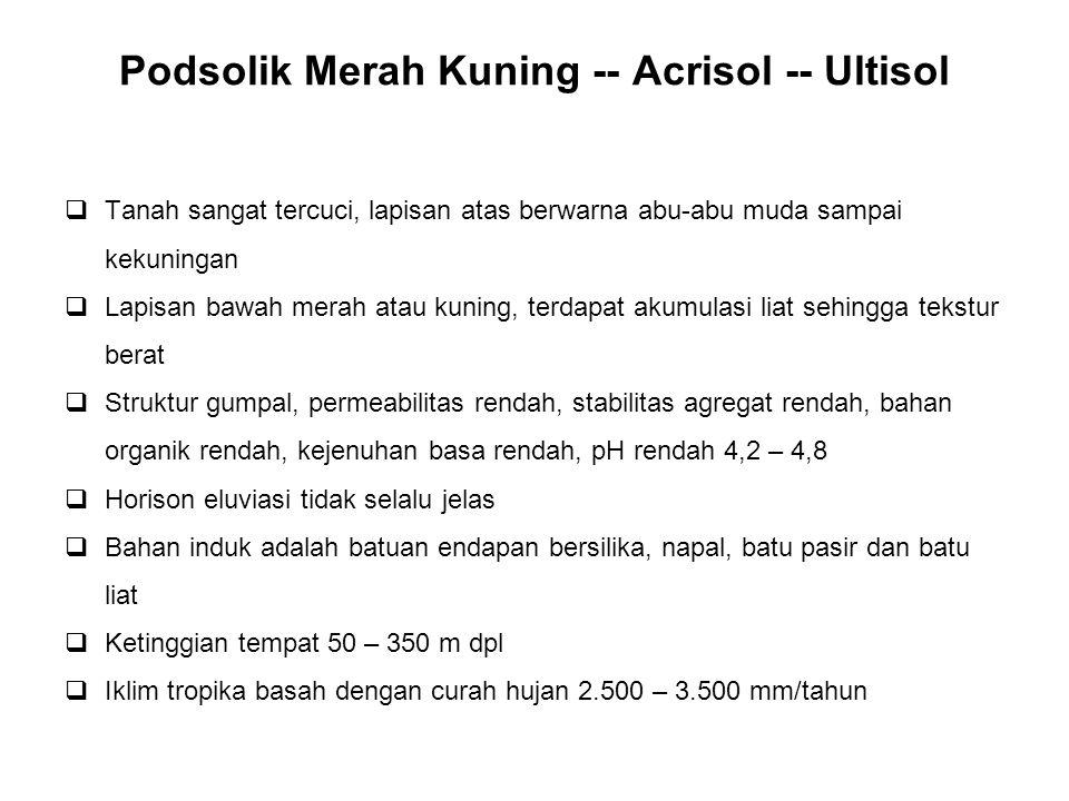 Podsolik Merah Kuning -- Acrisol -- Ultisol