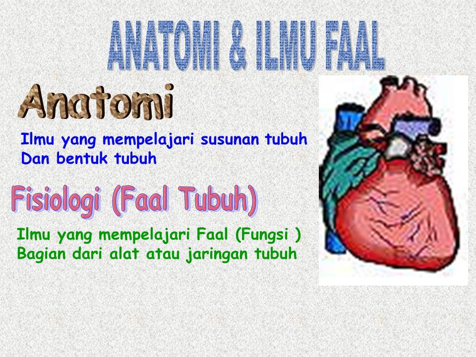 Fisiologi (Faal Tubuh)