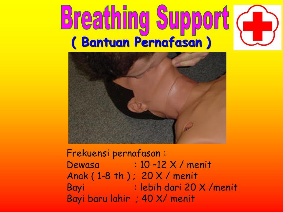 Breathing Support ( Bantuan Pernafasan ) Frekuensi pernafasan :