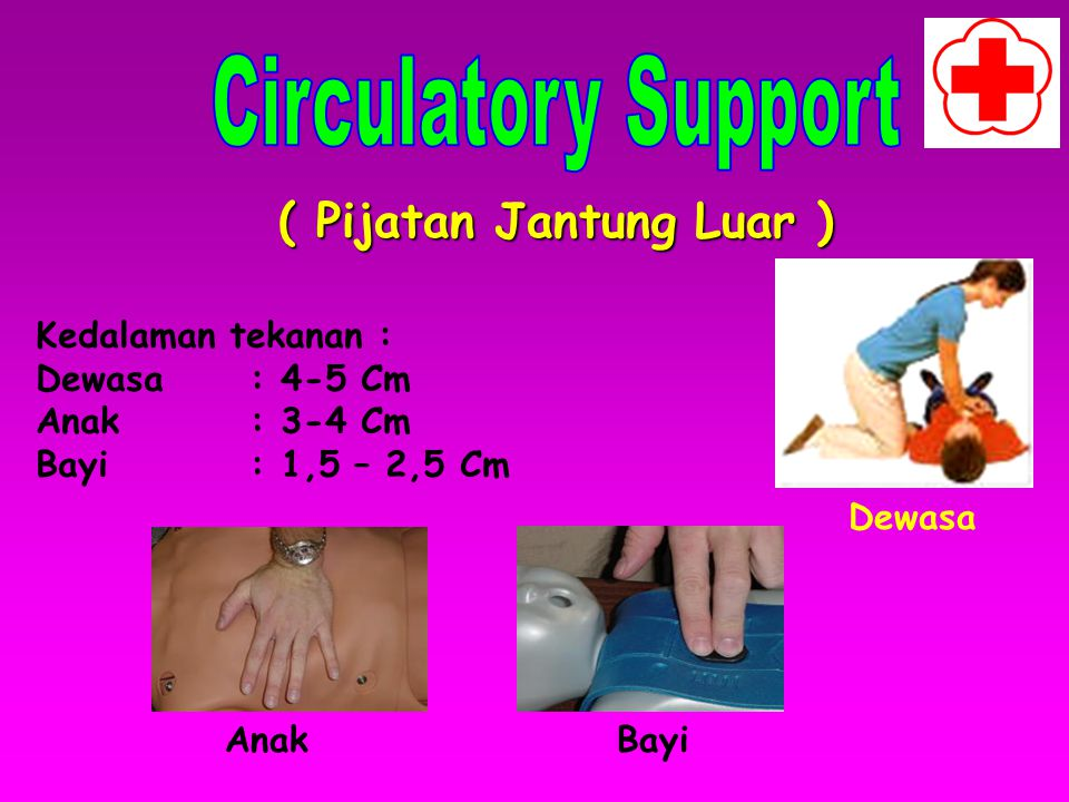 Circulatory Support ( Pijatan Jantung Luar ) Kedalaman tekanan :