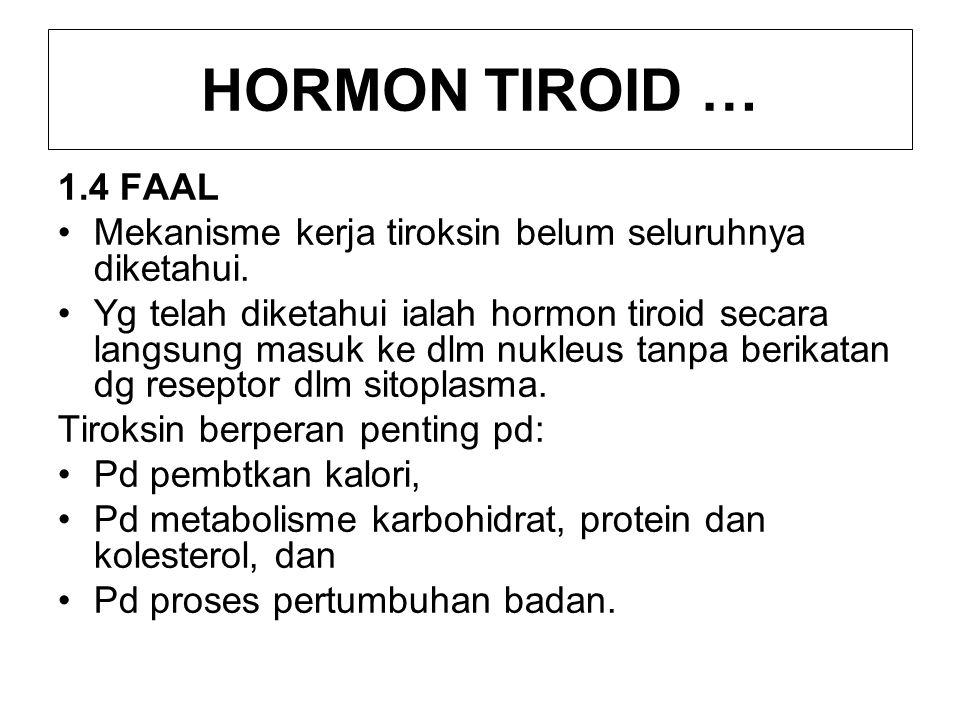 HORMON TIROID … 1.4 FAAL. Mekanisme kerja tiroksin belum seluruhnya diketahui.