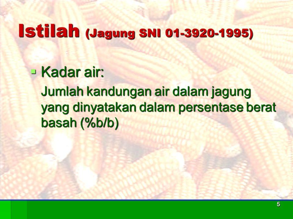 Istilah (Jagung SNI 01-3920-1995)