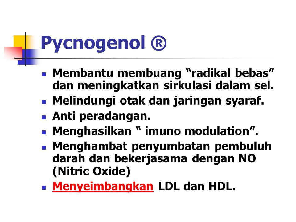 Pycnogenol ® Membantu membuang radikal bebas dan meningkatkan sirkulasi dalam sel. Melindungi otak dan jaringan syaraf.
