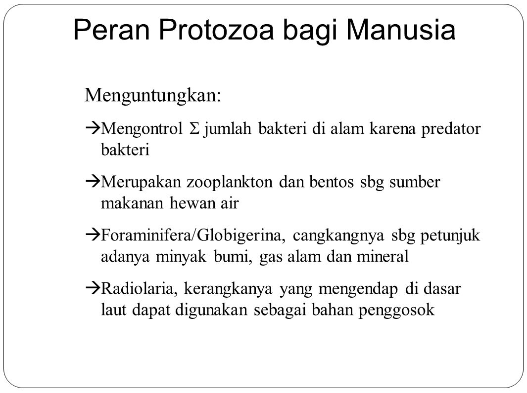 Peran Protozoa bagi Manusia