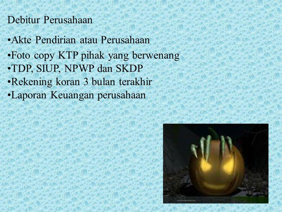 Debitur Perusahaan Akte Pendirian atau Perusahaan. Foto copy KTP pihak yang berwenang. TDP, SIUP, NPWP dan SKDP.