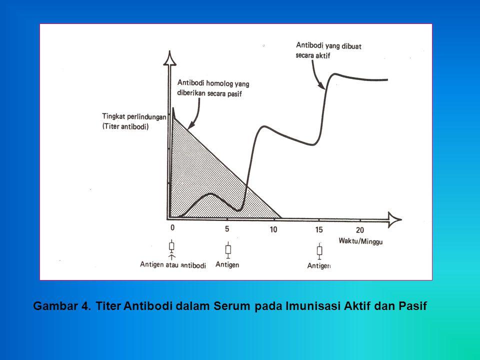 Gambar 4. Titer Antibodi dalam Serum pada Imunisasi Aktif dan Pasif