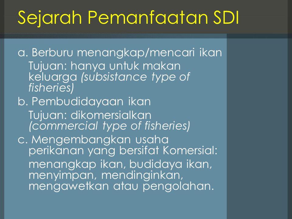 Sejarah Pemanfaatan SDI