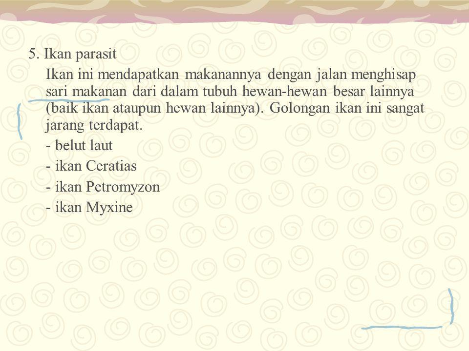 5. Ikan parasit