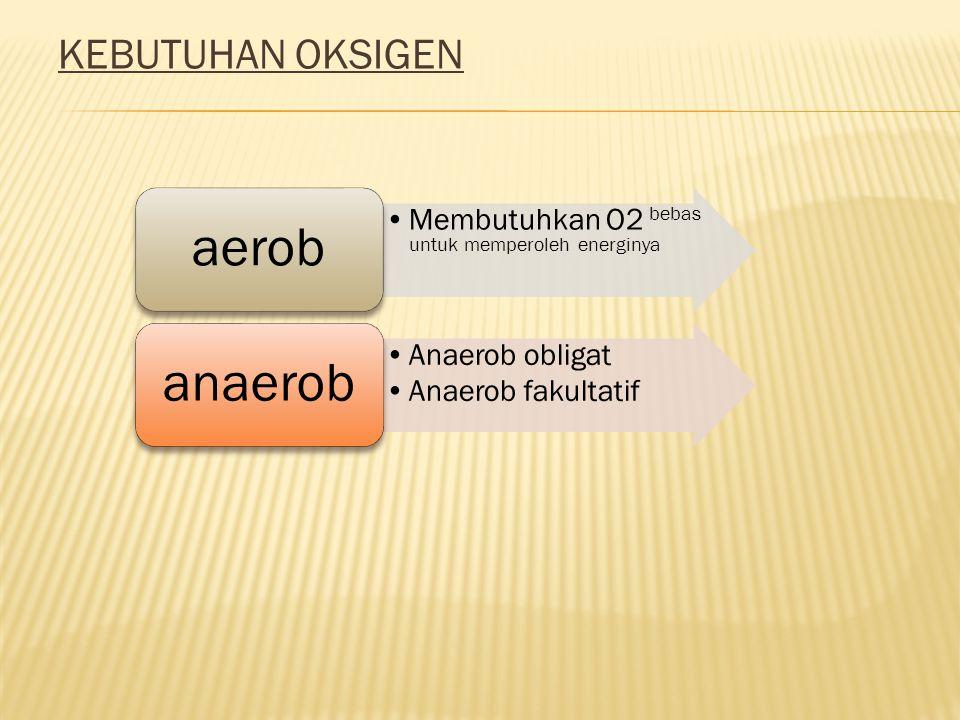 KEBUTUHAN OKSIGEN aerob