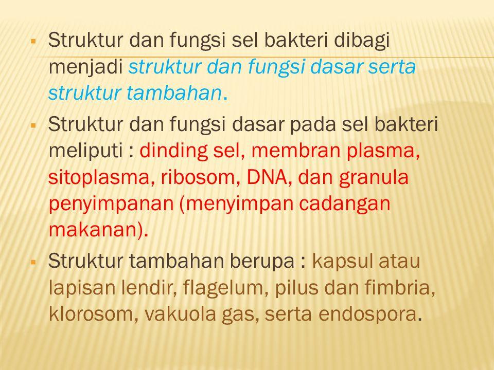 Struktur dan fungsi sel bakteri dibagi menjadi struktur dan fungsi dasar serta struktur tambahan.