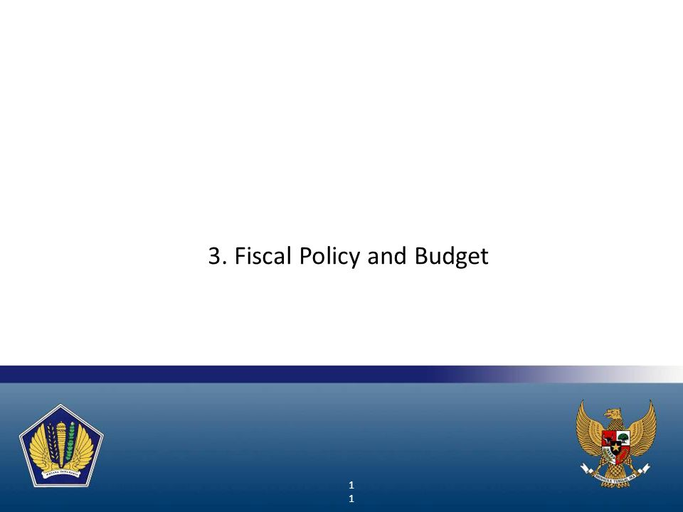 3. Fiscal Policy and Budget