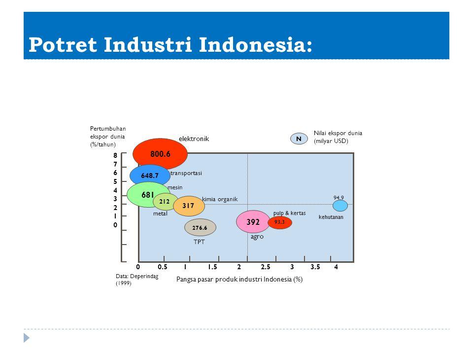 Potret Industri Indonesia: