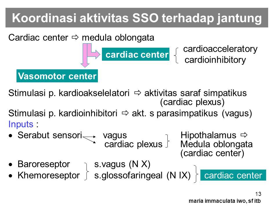 Koordinasi aktivitas SSO terhadap jantung
