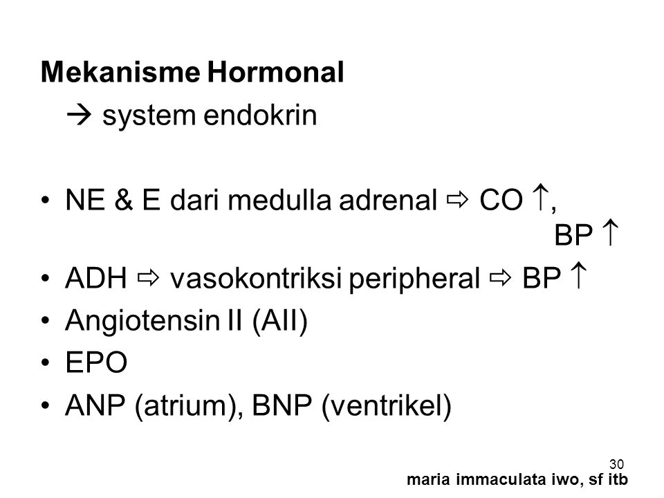NE & E dari medulla adrenal  CO , BP 