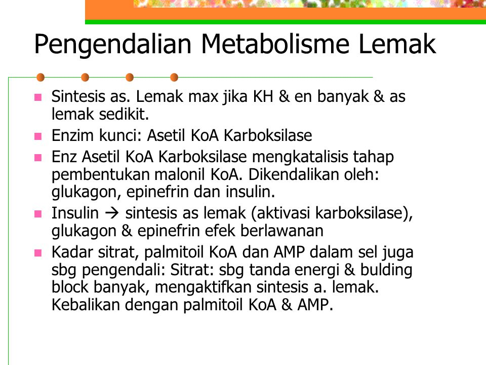 Pengendalian Metabolisme Lemak