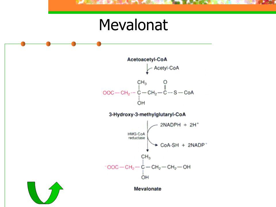 Mevalonat