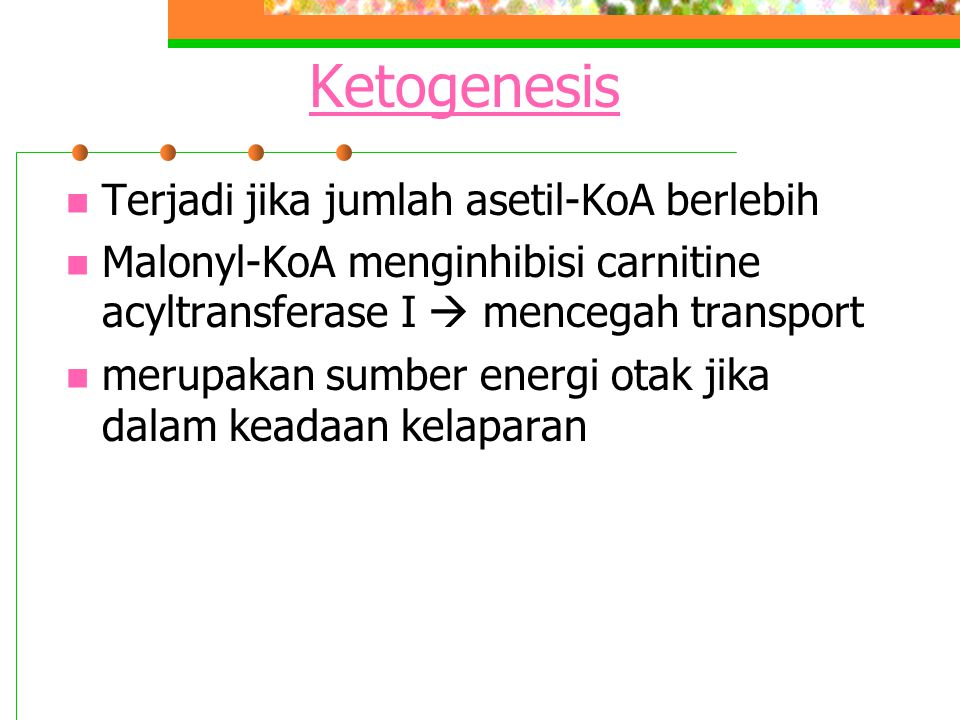 Ketogenesis Terjadi jika jumlah asetil-KoA berlebih