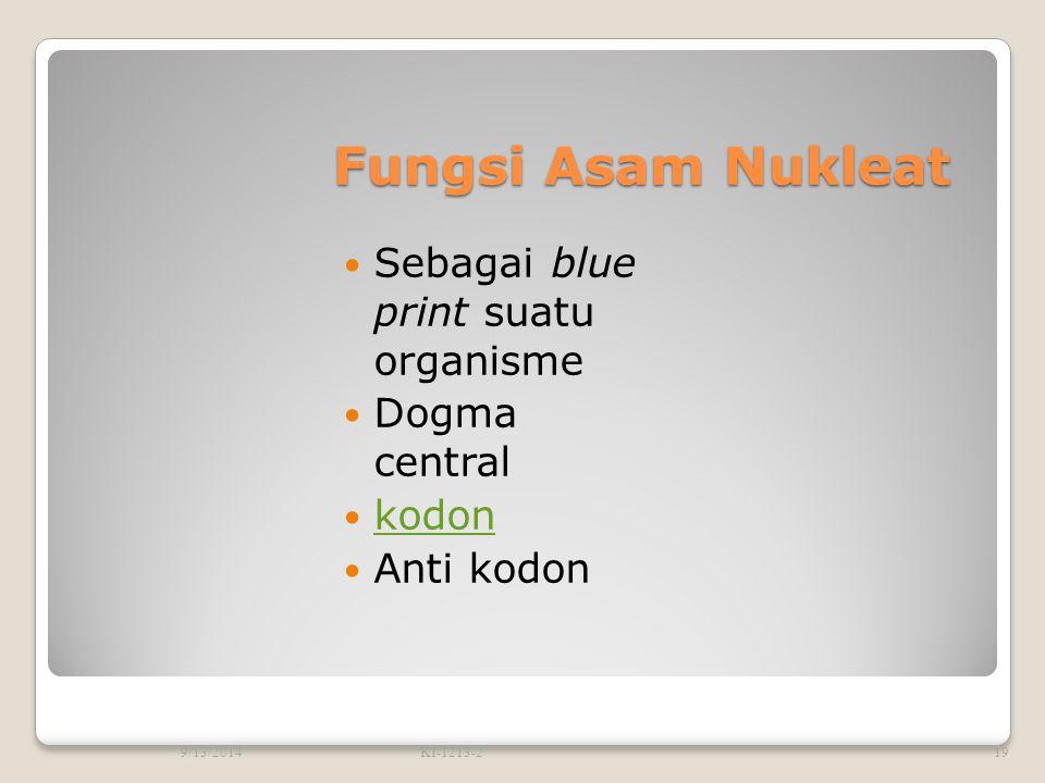 Fungsi Asam Nukleat Sebagai blue print suatu organisme Dogma central
