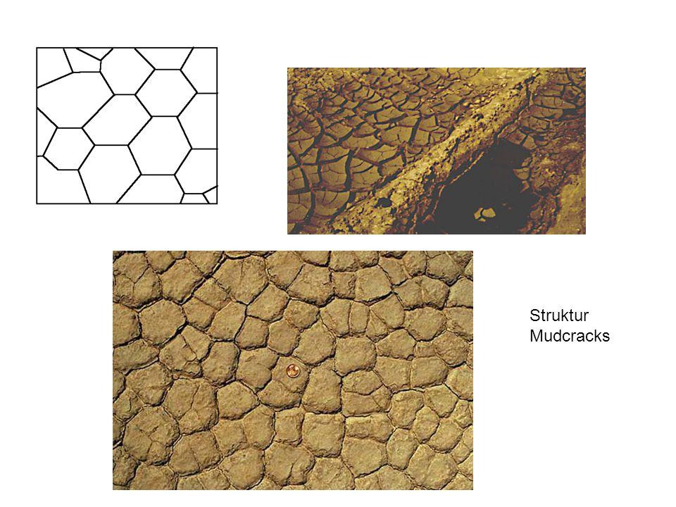 Struktur Mudcracks