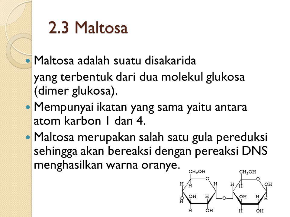 2.3 Maltosa Maltosa adalah suatu disakarida