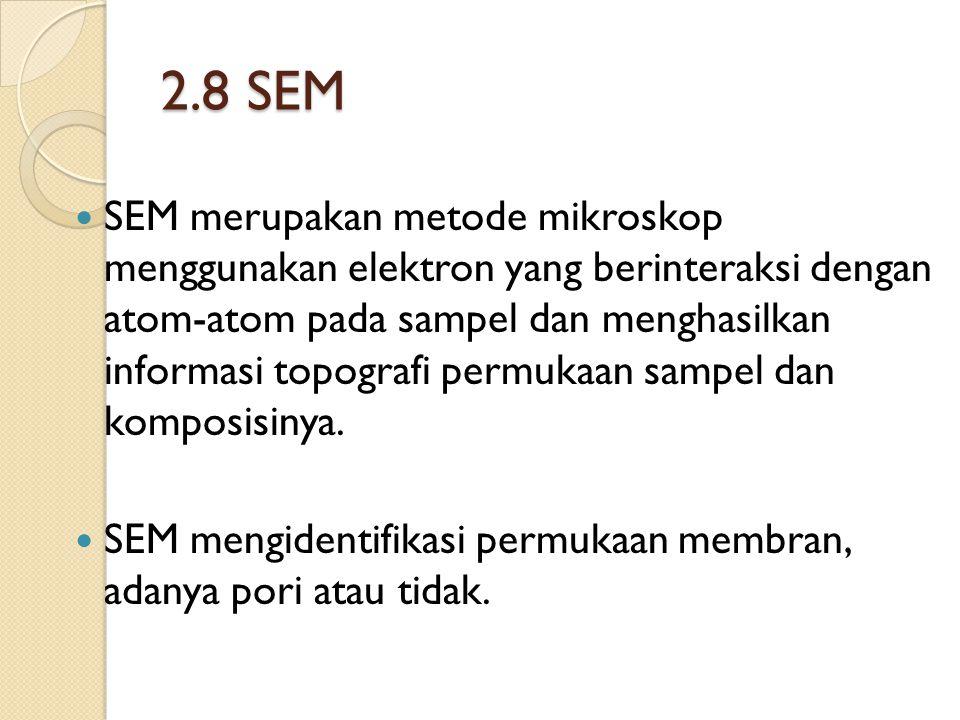 2.8 SEM