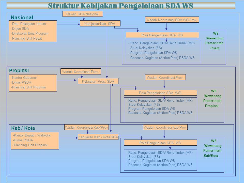 Struktur Kebijakan Pengelolaan SDA WS
