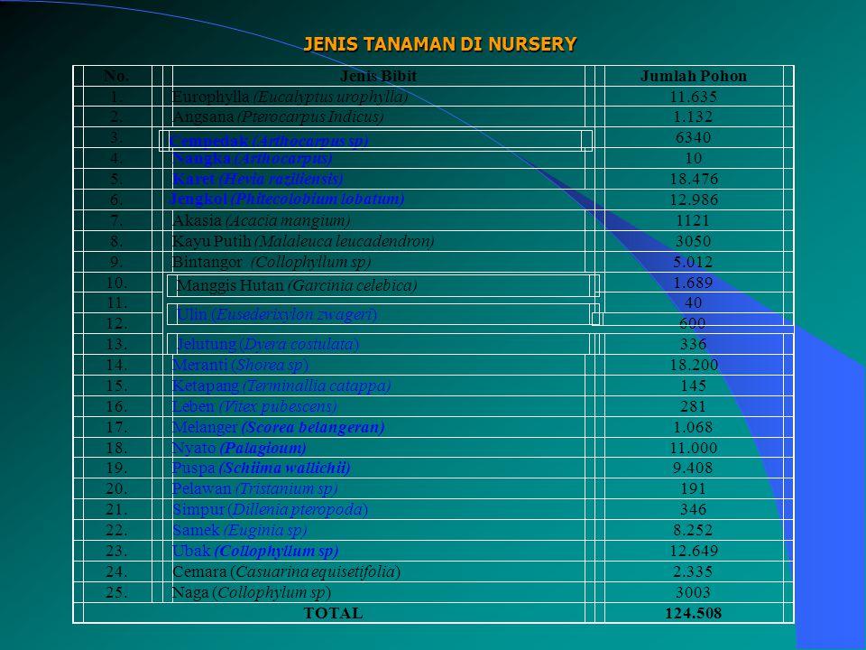 JENIS TANAMAN DI NURSERY