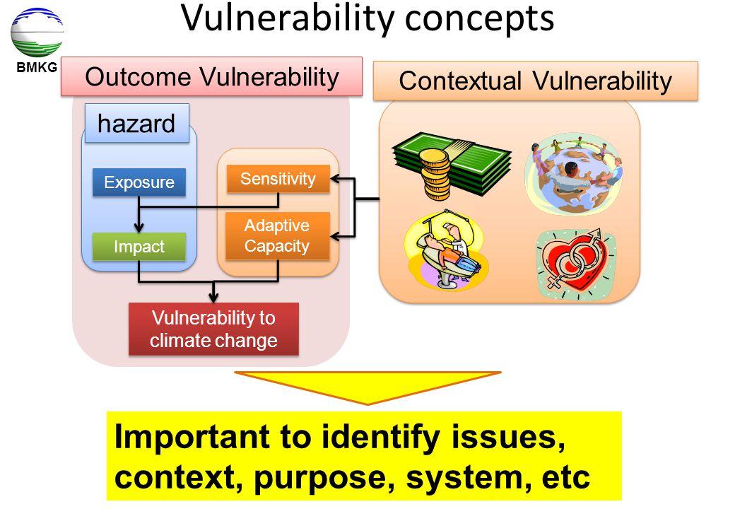 Vulnerability concepts
