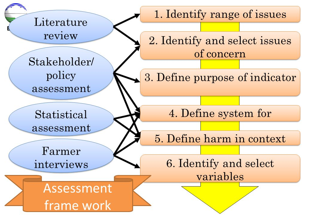 Assessment frame work 1. Identify range of issues Literature review