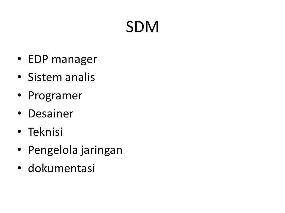 SDM EDP manager Sistem analis Programer Desainer Teknisi