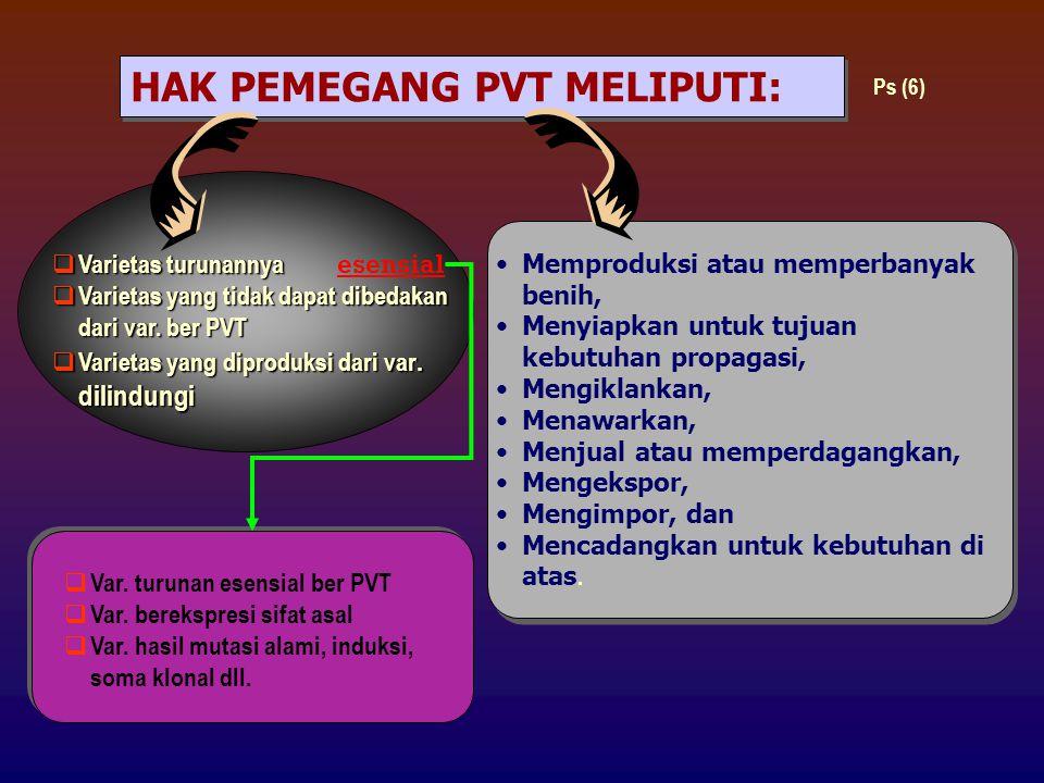 HAK PEMEGANG PVT MELIPUTI:
