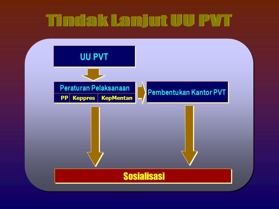 Peraturan Pelaksanaan Pembentukan Kantor PVT