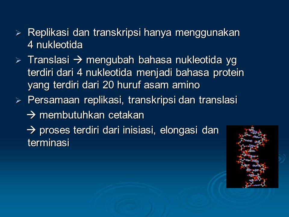 Replikasi dan transkripsi hanya menggunakan 4 nukleotida